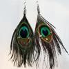 Fashional Earrings, Feather, Sold by Dozen