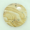 Gemstone pendant, pictuer jasper, coin, 45x45x6mm, Sold by PC