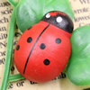 Mixed color Wooden Cabochons Ladybug For Barrette/Decoration Jewelry DlY-Accessories 25x17mm Sold by PC