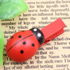 35mm Wood Cute cartoon Ladybug face wood clips for memo card clamp wooden paper pegs photo clamp Memo Note Clips Sold by PC